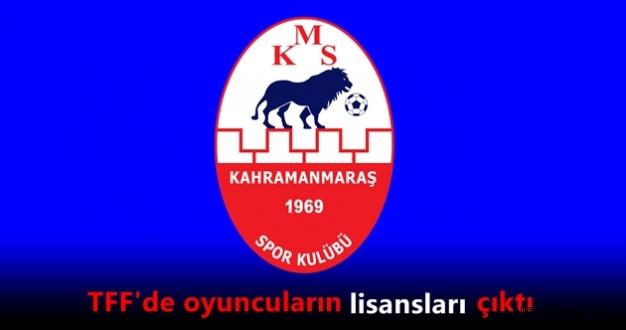 Kahramanmaraşspor'un resmi kadrosu belli oldu